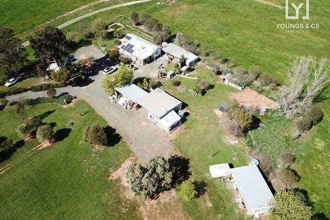Picture of 295 Brewer Rd, COOMA VIC 3616