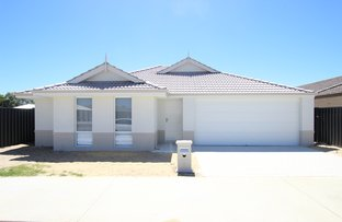 Picture of 3 Turnstone Crescent, Erskine WA 6210