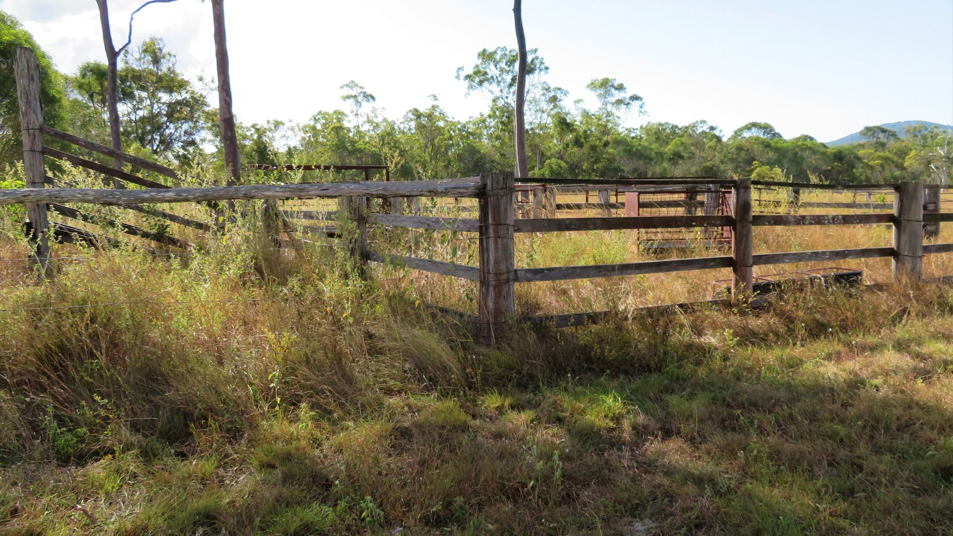 602 Taunton Road, Taunton QLD 4674, Image 2