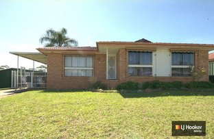 Picture of 25 Ohlfsen Road, Minto NSW 2566