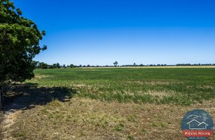 Picture of 563 Evans Road, Waggarandall VIC 3646