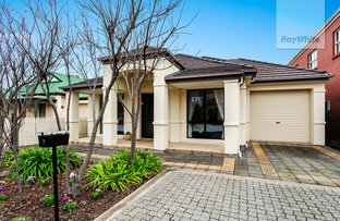 Picture of 7 Alexandrina Walk, Mawson Lakes SA 5095