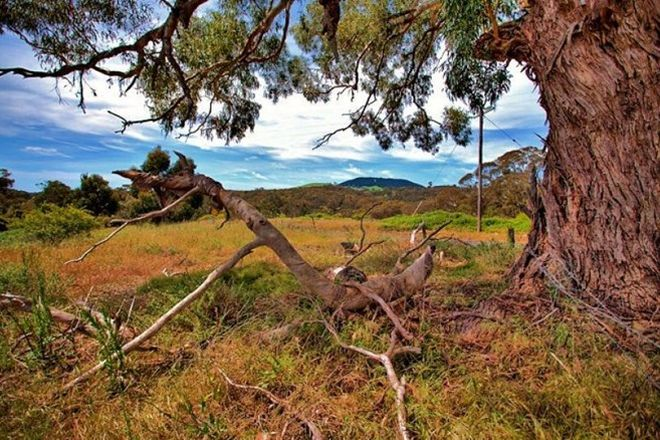 Picture of 239 Hepburn Newstead Road, ELEVATED PLAINS VIC 3461