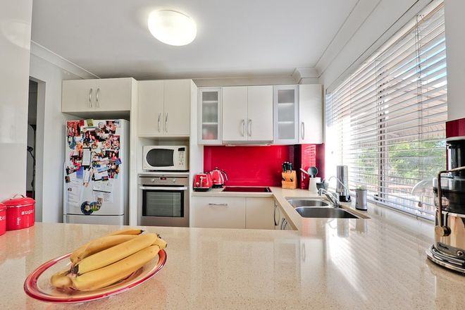 Picture of 8/98 Chalk Street, LUTWYCHE QLD 4030