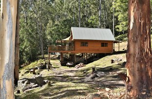 Watagan Creek Road, Laguna NSW 2325