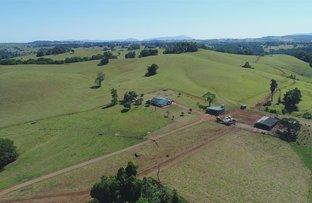 Picture of 495 Bauld Road, Malanda QLD 4885