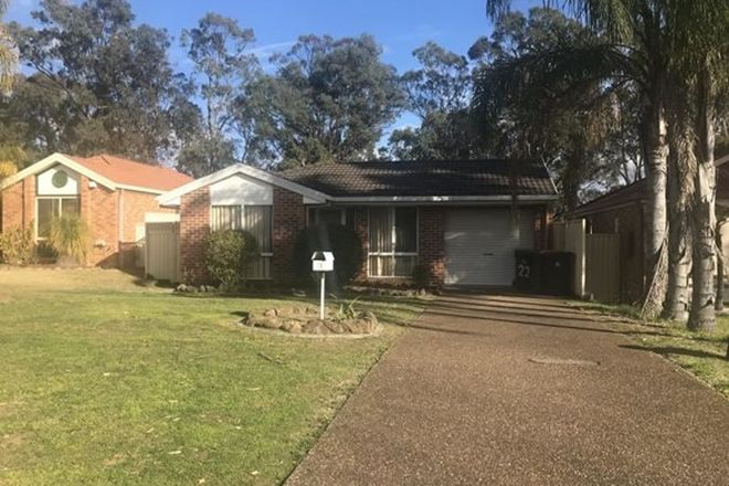 Picture of 22 MACKILLOP CRESCENT, ST HELENS PARK NSW 2560