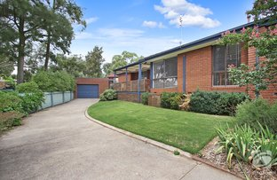 Picture of 6 Evans Court, Wodonga VIC 3690