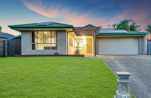 Picture of 32 Roe Street, Upper Coomera QLD 4209