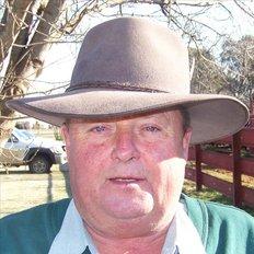 Gregory Doolan, Sales representative
