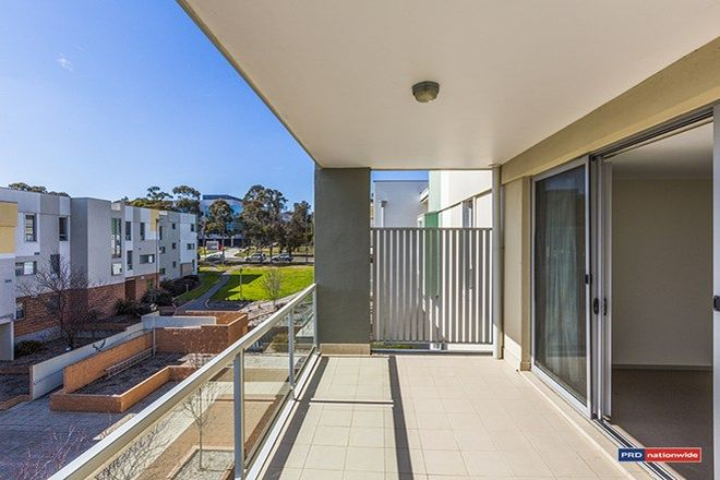 Picture of 93/10 Thynne Street, BRUCE ACT 2617