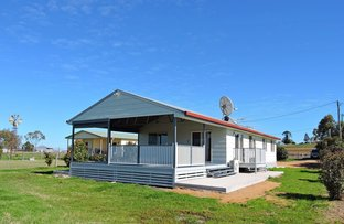 Picture of 1270 Freestone Rd, Freestone QLD 4370