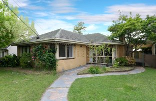 Picture of 19 Marchiori Road, Blackburn North VIC 3130