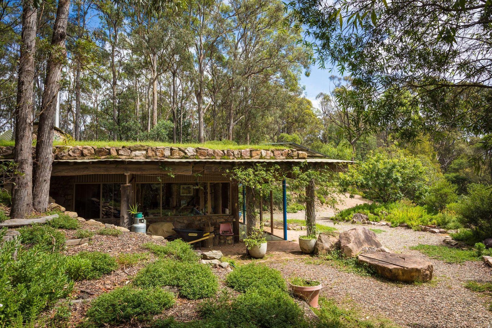 51 Doctor George Mountain Road, Tanja NSW 2550, Image 1