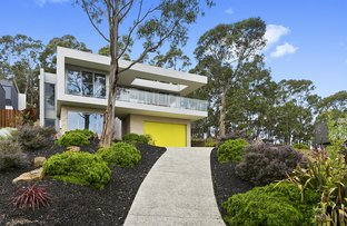Picture of 10 Skyline Court, Lorne VIC 3232