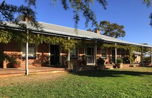 Picture of 14 Soldiers Settlement Rd, Bective NSW 2340