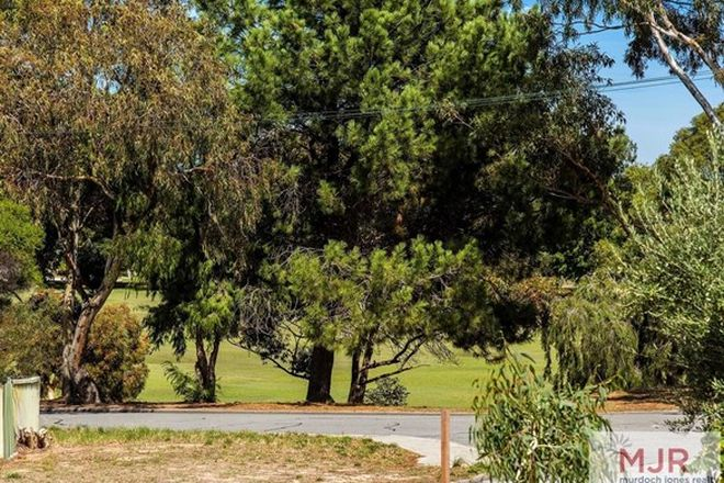 Picture of 38B Dubove Road, SPEARWOOD WA 6163