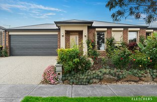 Picture of 14 Pomaderris Drive, Mernda VIC 3754
