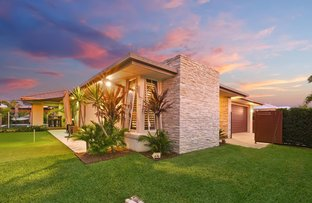 Picture of 7 Yucca Court, Mountain Creek QLD 4557