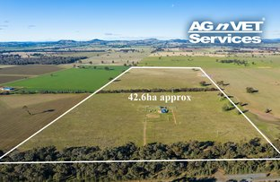 Picture of 4332 Olympic Highway, Henty NSW 2658