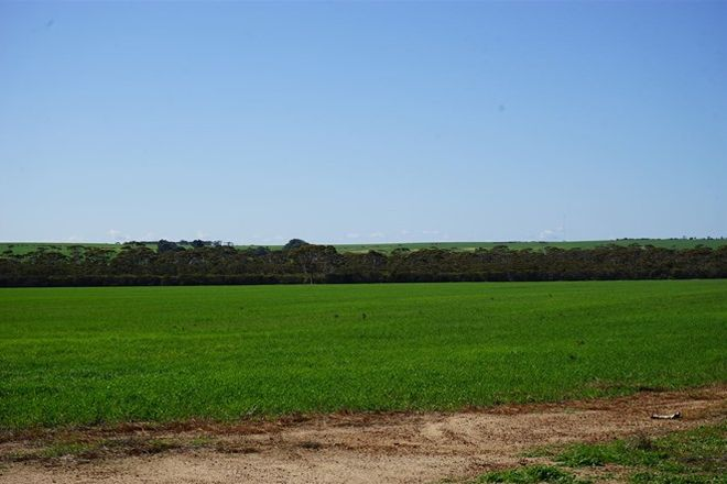 Picture of 711 Hyden - North Rd, MOUNT WALKER WA 6369