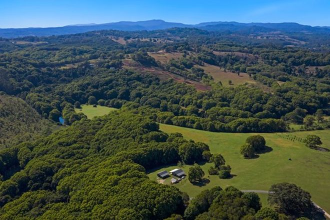 Picture of 68 Pine Mountain Road, POSSUM CREEK NSW 2479