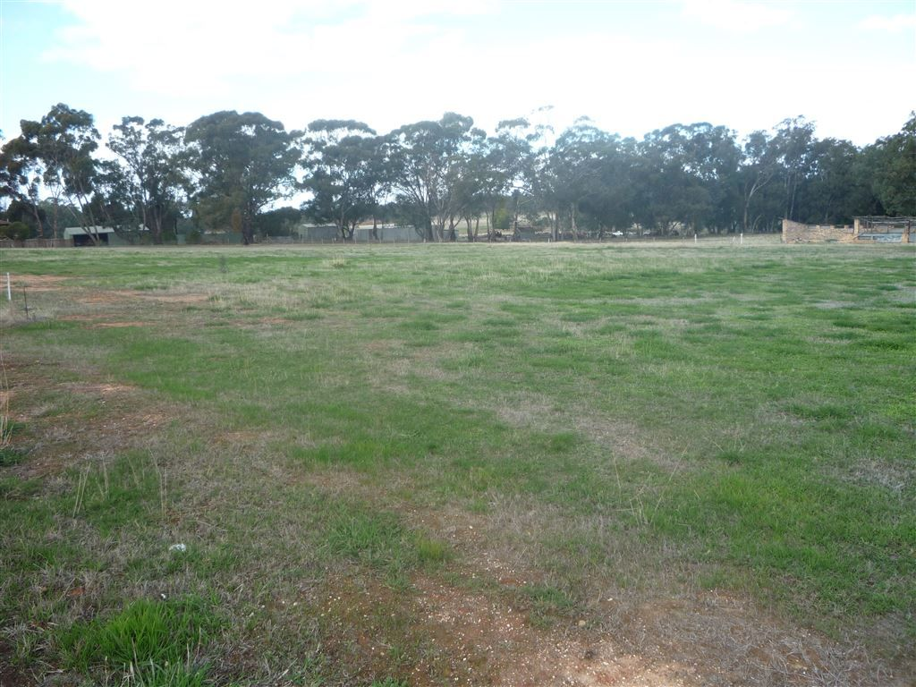 Lot 9 24 Inglewood Road, St Arnaud VIC 3478, Image 0