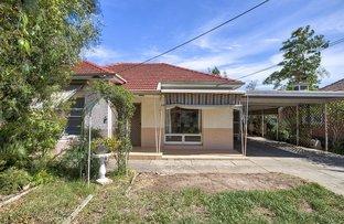 Picture of 1 Thistle Avenue, Flinders Park SA 5025