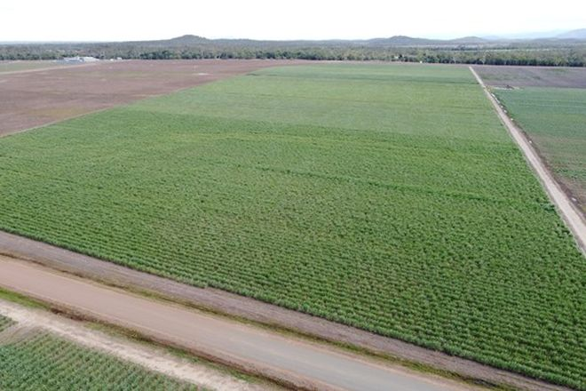 Picture of Lot 11 Up River Road, PROSERPINE QLD 4800