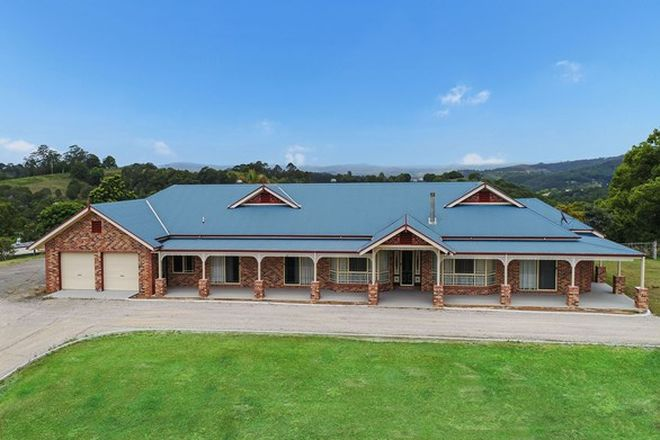 Picture of 437 Black Mountain Road, BLACK MOUNTAIN QLD 4563
