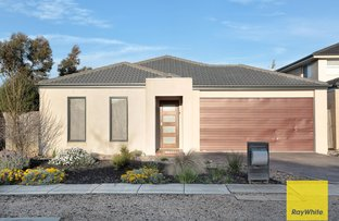 Picture of 7 Cooktown Avenue, Point Cook VIC 3030