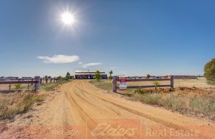 Picture of 758 Ludlow-Hithergreen Road, Busselton WA 6280