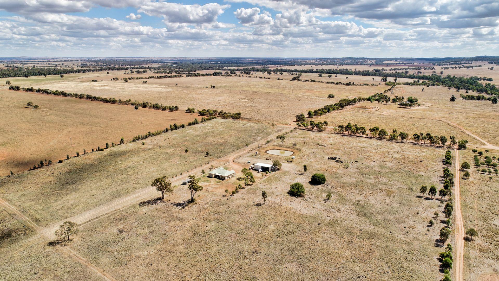 302L Dunedoo Road, Ballimore NSW 2830, Image 1