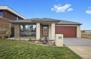 Picture of 57 Shingleback Street, Throsby ACT 2914