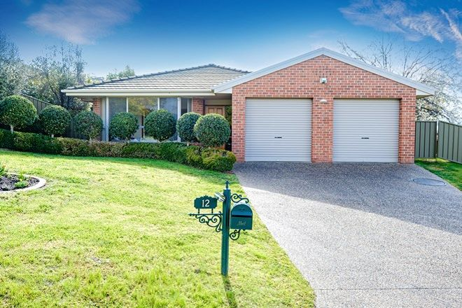 Picture of 12 Hillock Avenue, EAST ALBURY NSW 2640