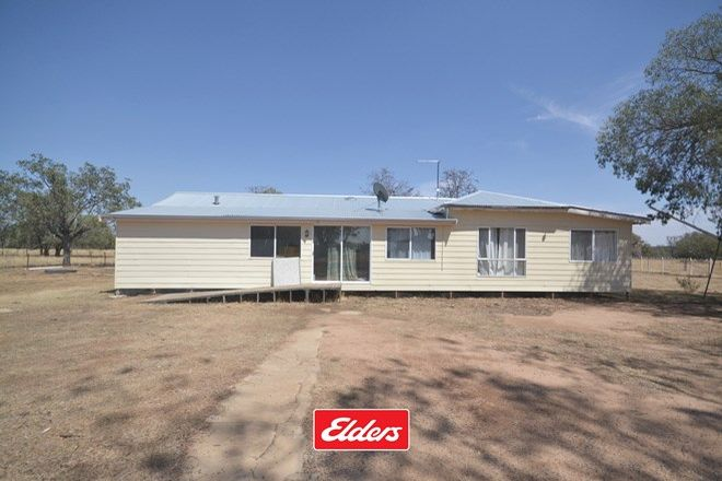 Picture of 8066 YETMAN ROAD, WALLANGRA NSW 2360