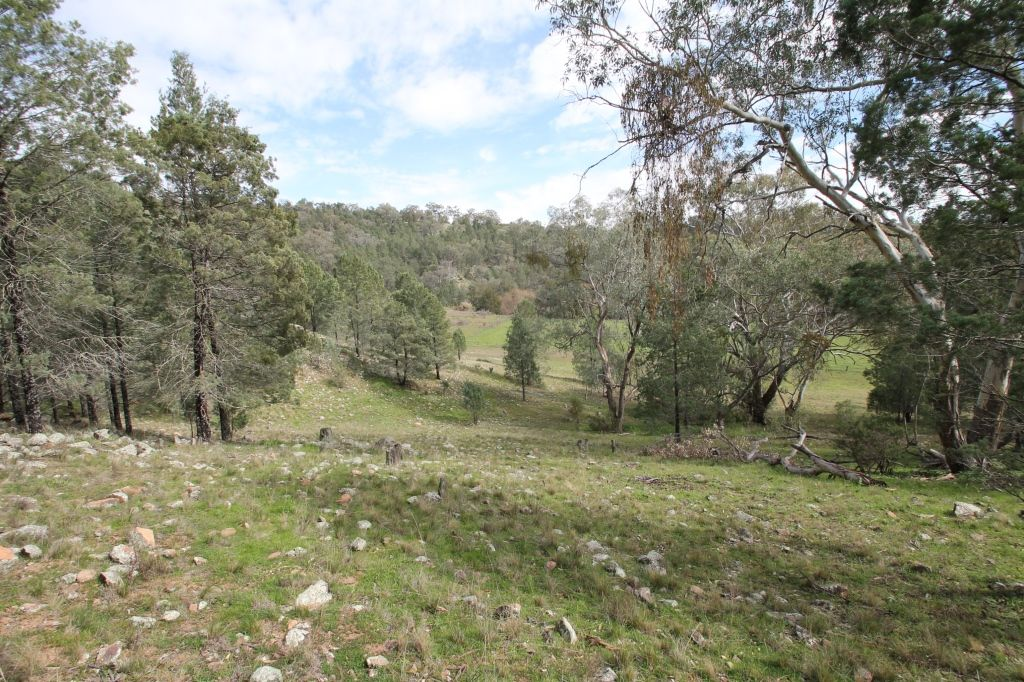 Lot 12 Grandview Place, Quirindi NSW 2343, Image 0