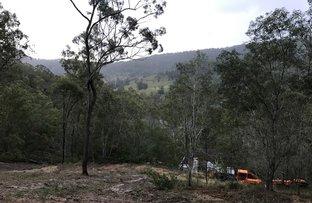 Lamington National Park Road, Canungra QLD 4275