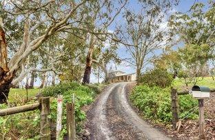 Picture of 218 Martin Hill Rd, Forreston SA 5233