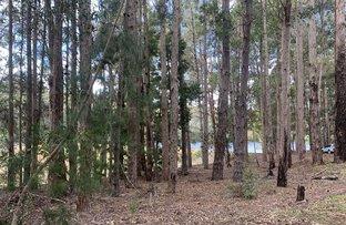 Picture of 133 Karri Lane, Quinninup WA 6258