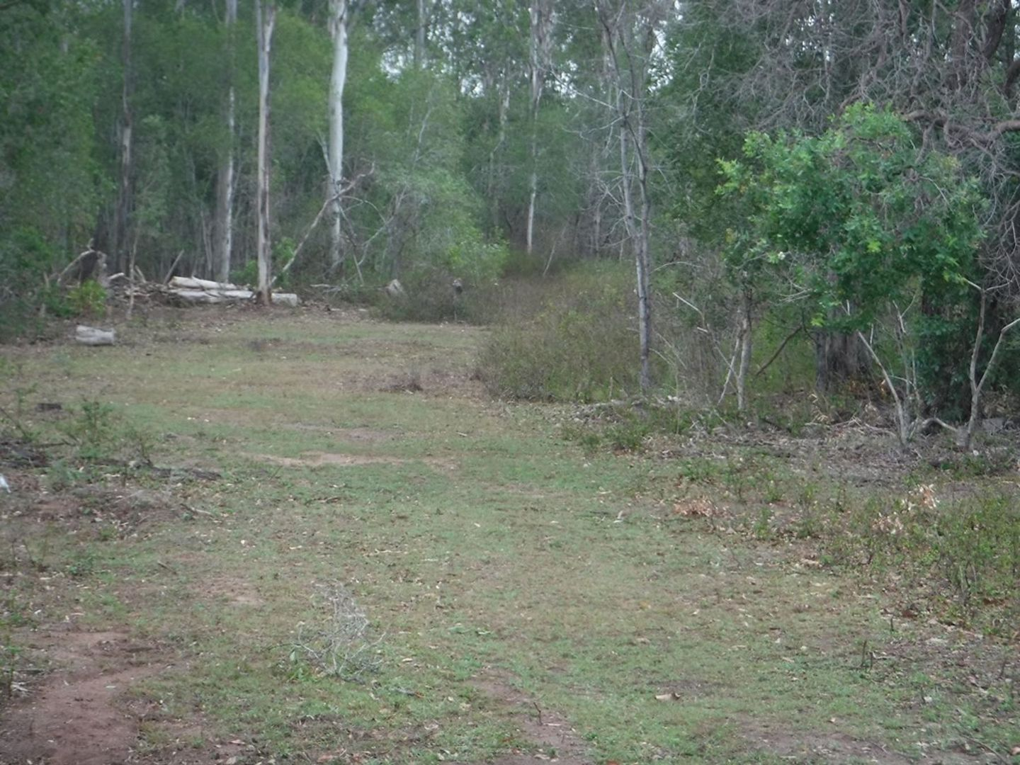 Lot 4 Iindah Road West, Tinana QLD 4650, Image 1
