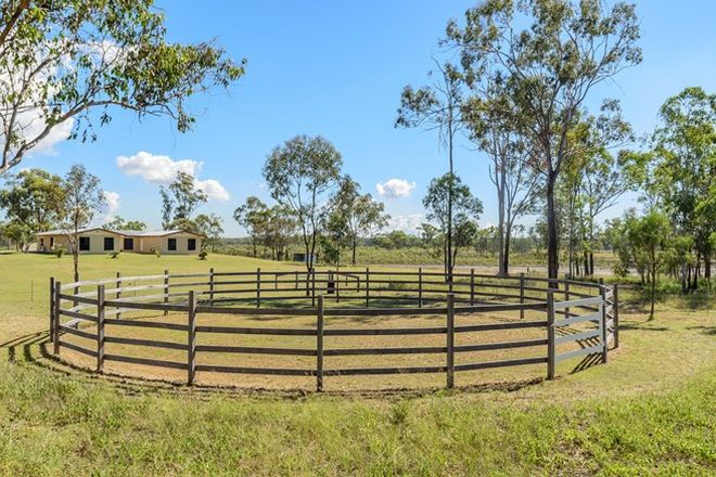 Picture of 20 Rogers Road, BOYNE ISLAND QLD 4680