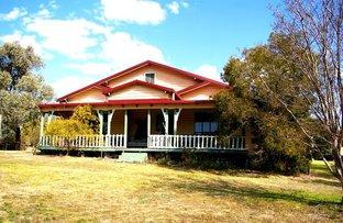 866 Wearnes Rd, Bundarra NSW 2359