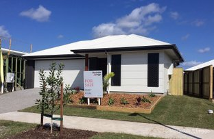 Picture of 4 Argus Street, Palmview QLD 4553