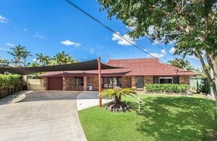 Picture of 3 Ebbro Court, Daisy Hill QLD 4127