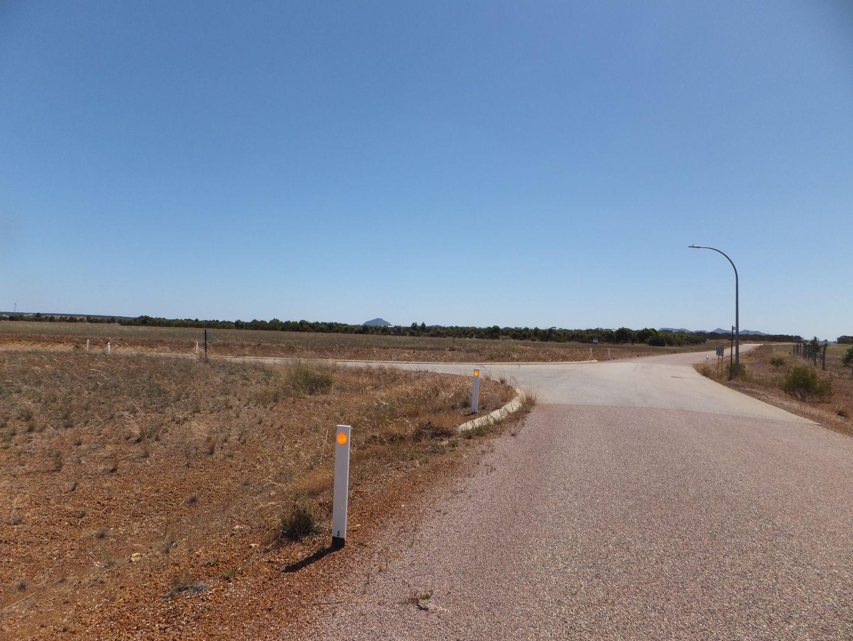 51 Daviesia Drive, Hopetoun WA 6348, Image 2