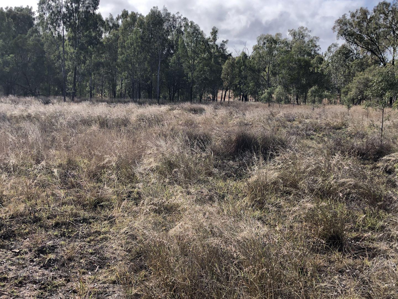 Radio Station Access Road, Eidsvold QLD 4627, Image 1