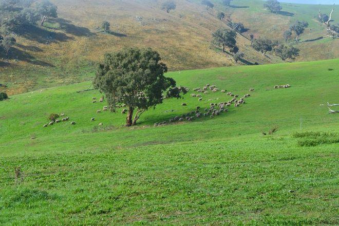 Picture of Blackmans Creek Road, Bigga Via Crookwell, CROOKWELL NSW 2583