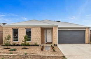 Picture of 60 Elegante Drive, Winter Valley VIC 3358