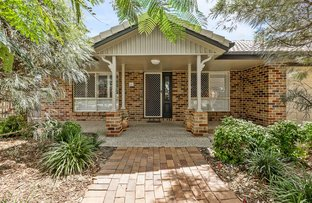 Picture of 4 Oxley Place, Forest Lake QLD 4078